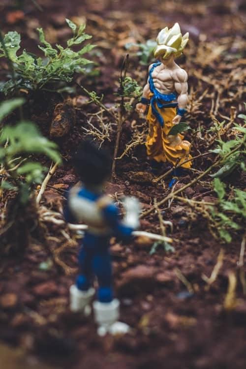 Goku and Vegetta